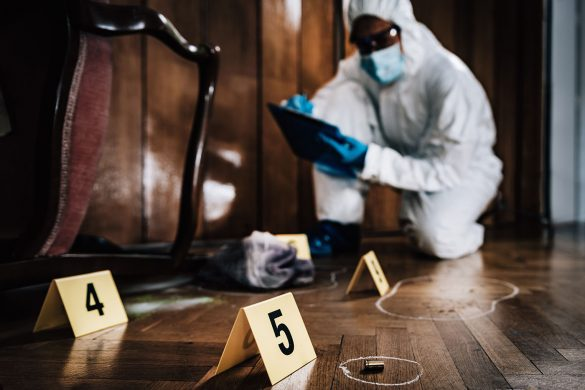 Hero Image How to Become a Homicide Detective: Career Guide